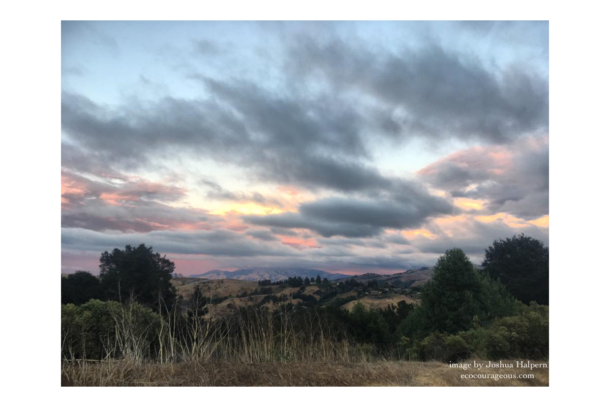 Image of Mt. Diablo from the Moraga Hills, San Francisco Bay Area